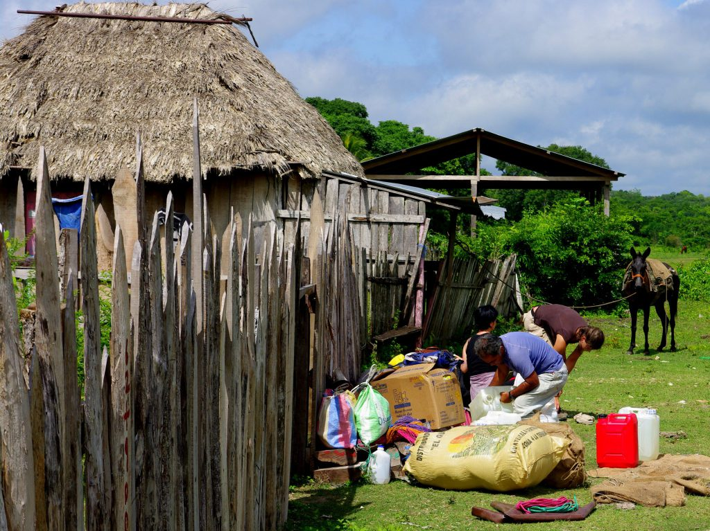 Beladen der Mula - Im Peten - Guatemala