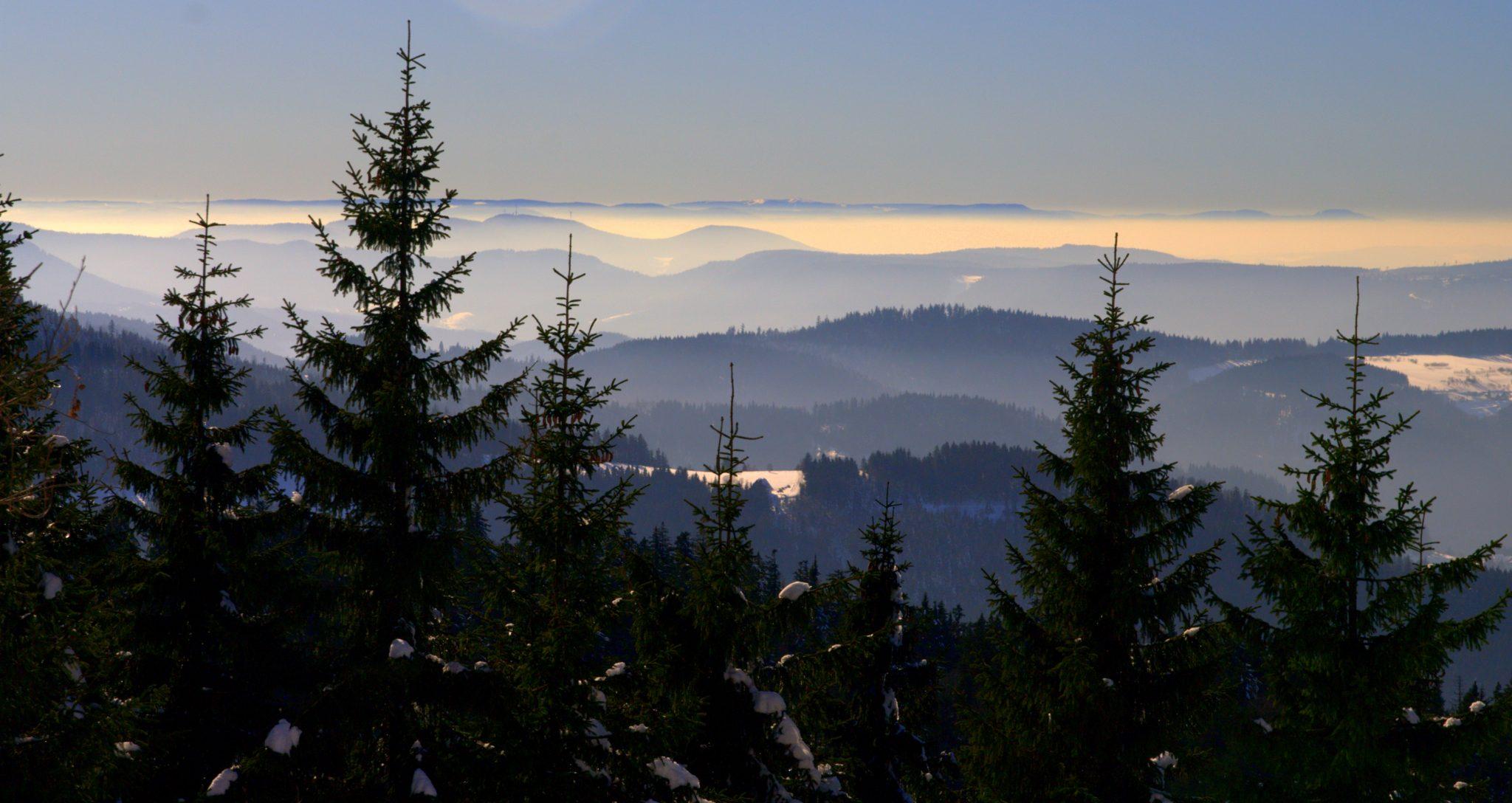 Blick in die Rheinebene von der Hornisgrinde - Schwarzwald