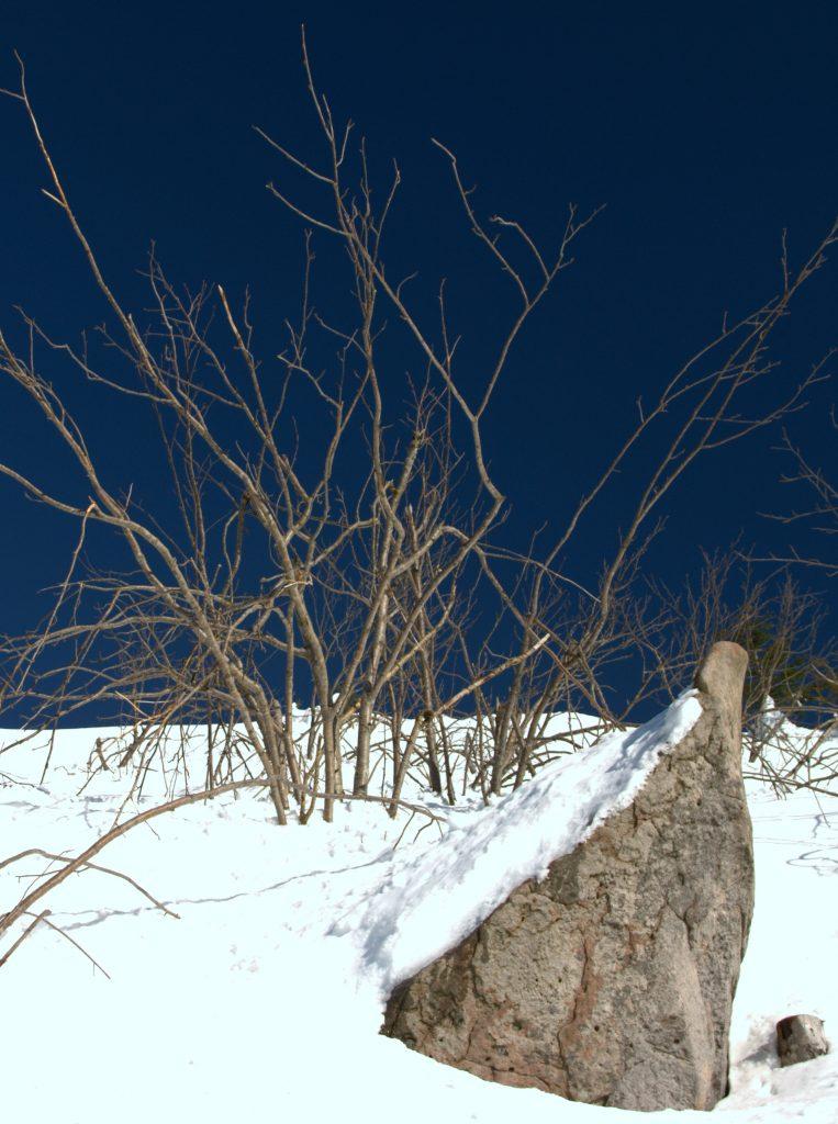Kurz vor dem Gipfel - Hornisgrinde
