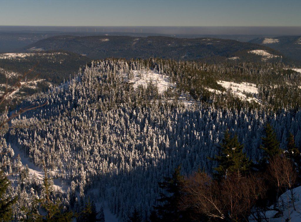 Blick in den Biberkessel - Hornisgrinde - Schwarzwald
