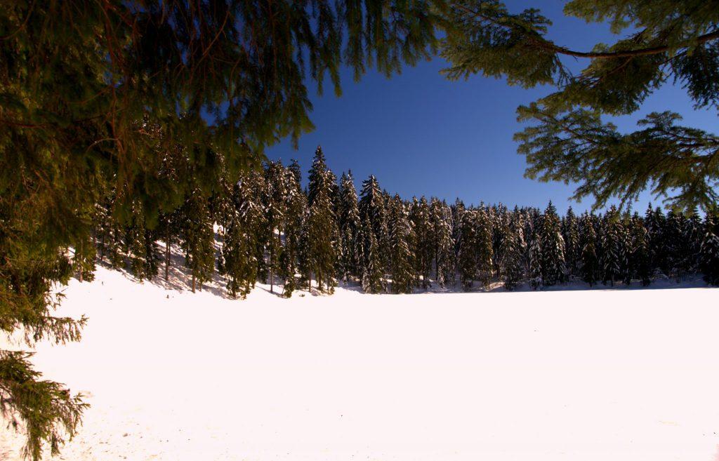 Blick über den gefrorenen Mumelsee
