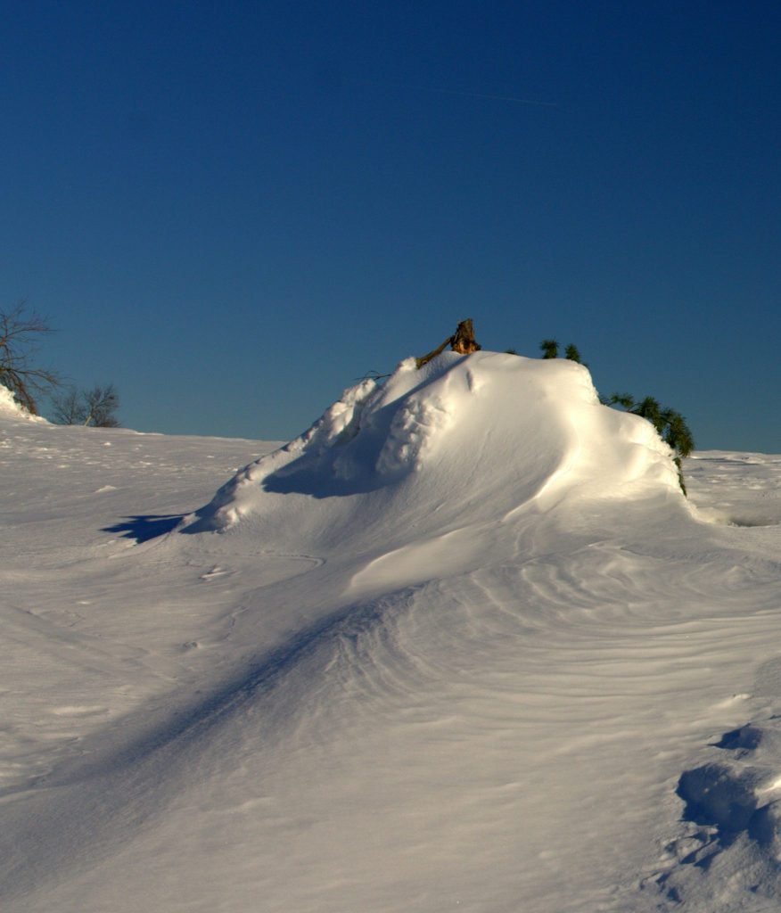 Schneeverwehung - Hornisgrinde