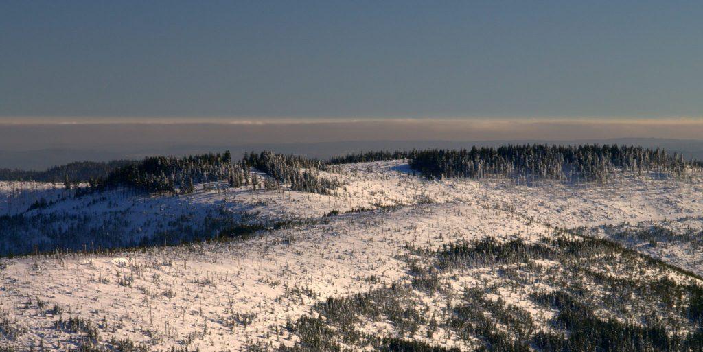 Schwarzwald im Schnee - Blick von der Hornisgrinde