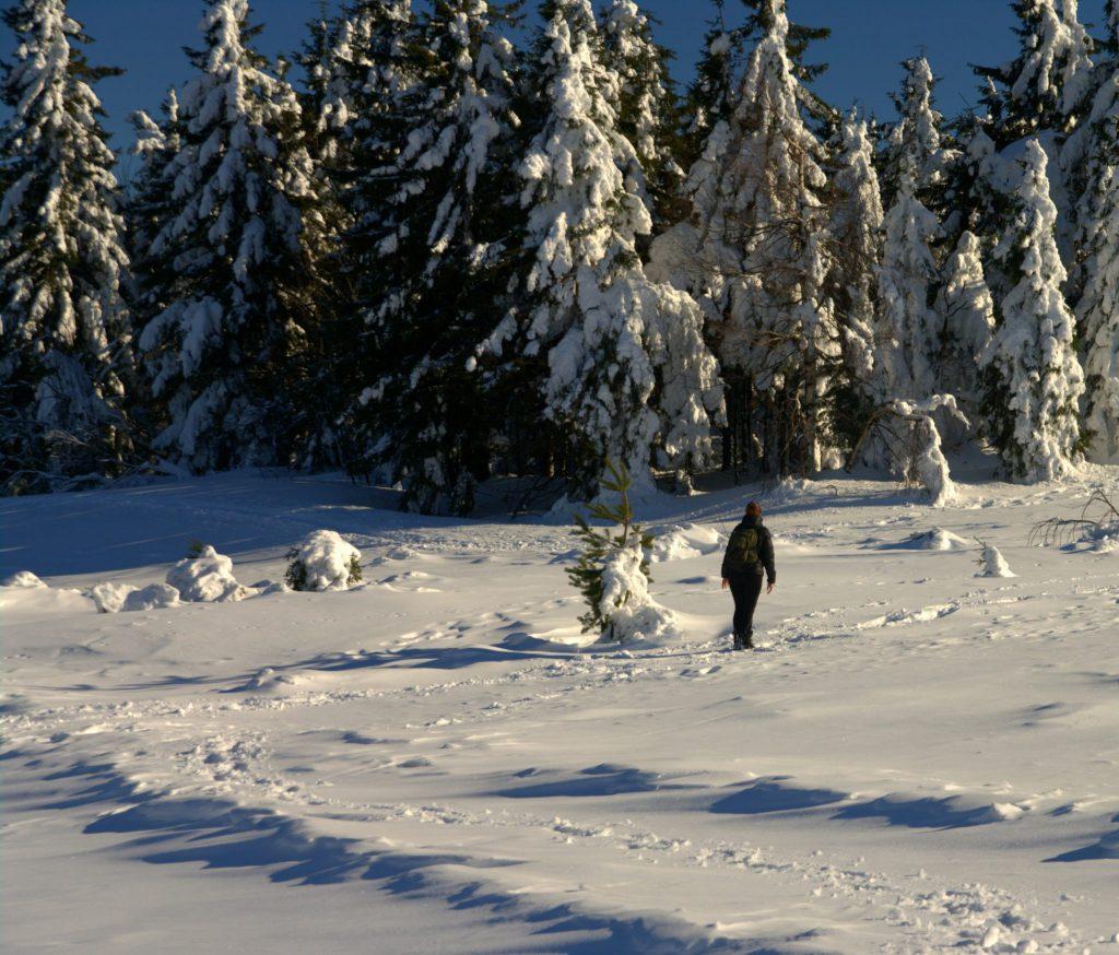 Wanderer im Schnee - Hornisgrinde - Schwarzwald