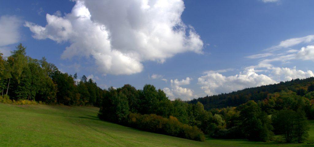 Blick nach Norden - Moosalbtal