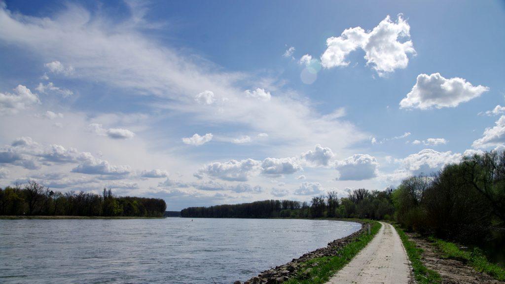 Rheinbiegung bei Hördt - Blick nach Süden