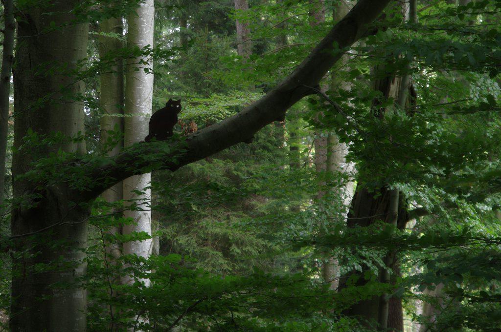 Wildkatze aus Blech im Baum
