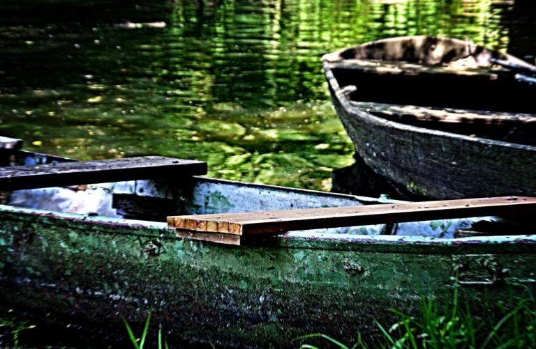 Schwan und Boote