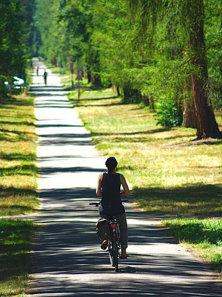 Fahrradfahrer - Sigma AF Zoom 75 - 200 mm 1:3,8 multi-coated, Pentax PK , Pentax K20D - F5.6, ISO100, 1/400, 200mm - Pentax K20D - bearbeitet mit Darktable und Gimp