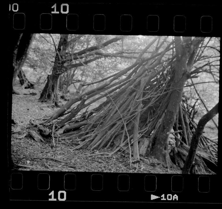 Kamera: Akarette II mit Schneider Kreuznach Xenon 1:2,0 F=50mm