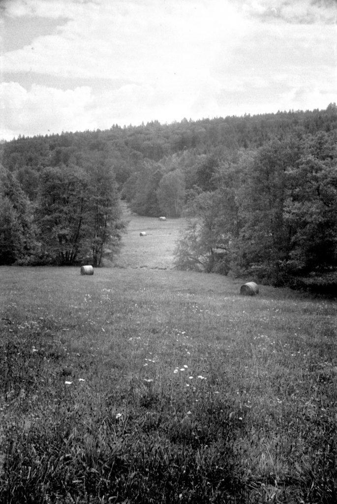 Akarette II - Schneider Kreuznach XENON 1:2,0 F=50mm - Agfa APX 400