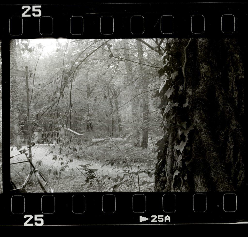 Mit dem Fahrrad im Wald  - Akarette II - Schneider Kreuznach XENON 1:2,0 F=50mm - Agfa APX 400
