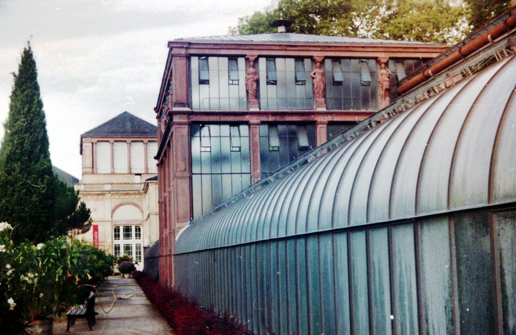 Gewächshaus des botanischen Garten in Karlsruhe - Akarette II und Fujicolor Superia 200