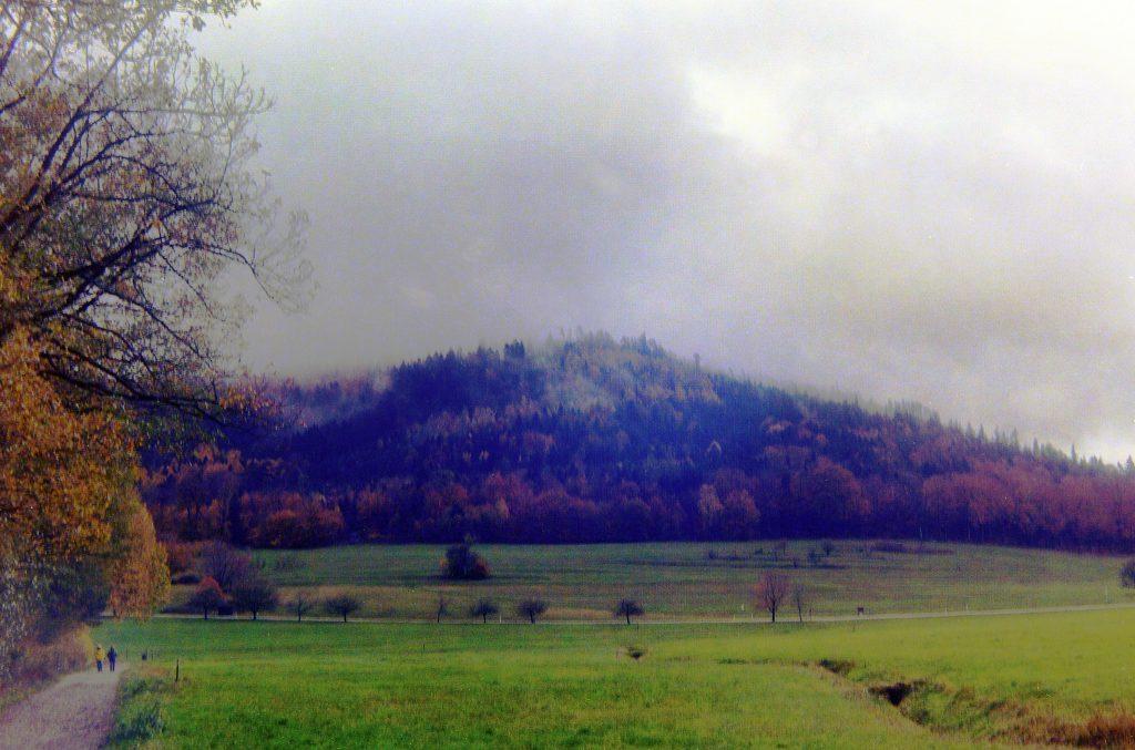 Landschaft bei Moosbronn - Zeiss Ikon Ercona mit Kodak Ektar 100