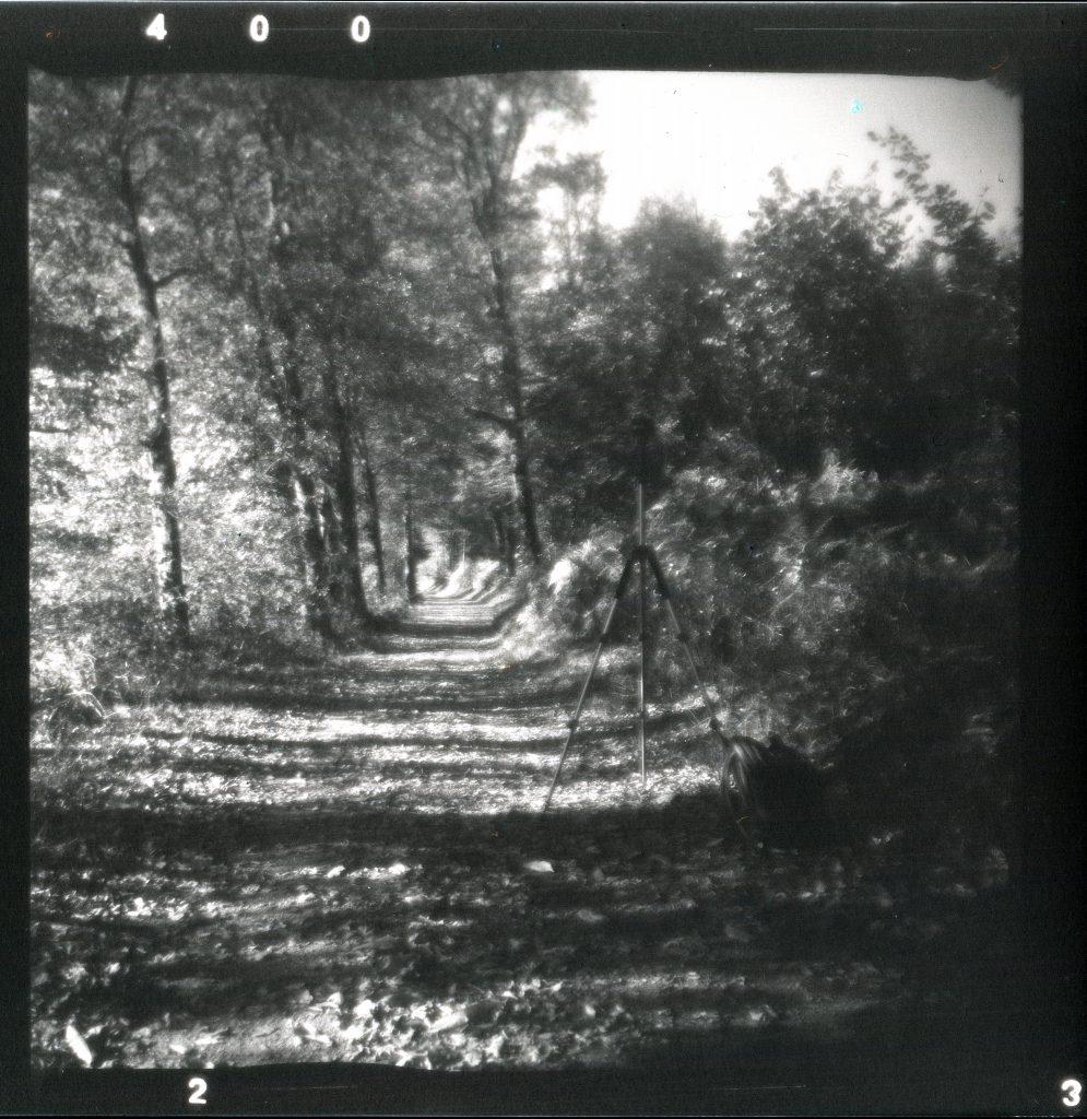 Waldweg - Felica - Vredeborch - Fomapan 400