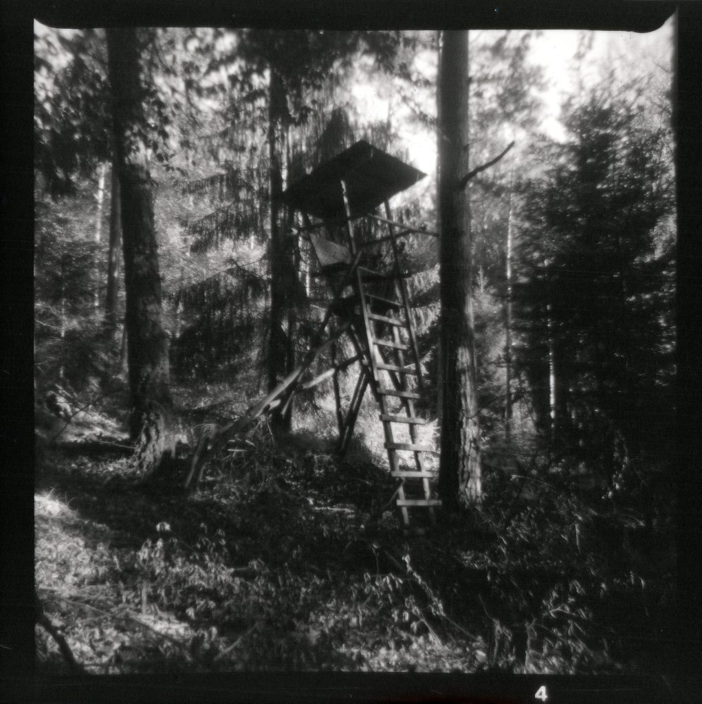 Hochsitz - Felica - Vredeborch - Fomapan 400