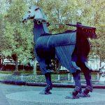 Kamera: Voigtländer Vito B mit Color Skopar 1:3,5 / 50mm