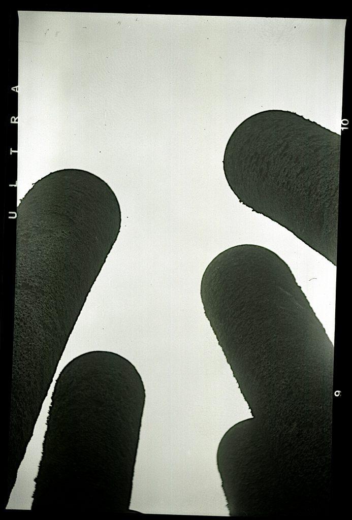 Betonsäulen im Schloßpark - etwas stärker geschärft